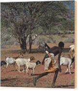 Goat Chase Wood Print