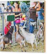 Goats At County Fair Wood Print
