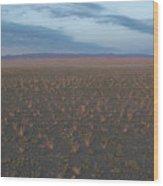 Gobi Desert Wood Print