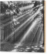 God Beams Wood Print