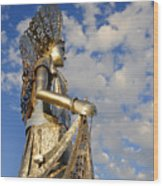 Goddess Isthmus Wood Print