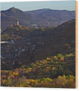 Godesburg Wood Print