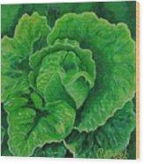 God's Kitchen Series No 5 Lettuce Wood Print