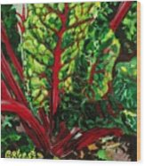 God's Kitchen Series No 7 Swiss Chard Wood Print