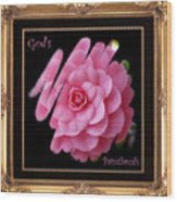 God's Paintbrush With Gold Frame Wood Print