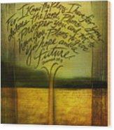 God's Plans Wood Print