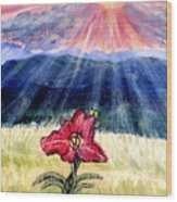 God's Ray's Shining On A Red Lily Flower In The Spring Wood Print