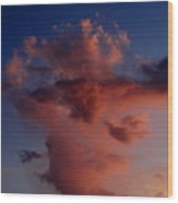 Godzilla Cloud-debbie-may Wood Print