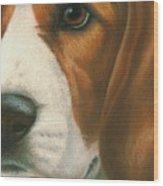 Goggie Beagle Wood Print