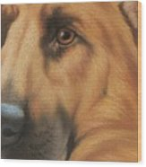 Goggie Shepherd Wood Print