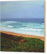Going Coastal Wood Print
