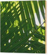 Going Green Wood Print by Brad Scott