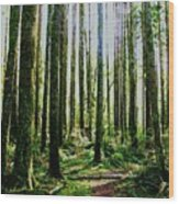 Going Green Wood Print by Dean Edwards