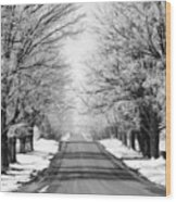 Going Home For The Holidays  Wood Print