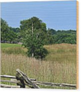 Going To Appomattox Court House Wood Print
