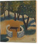 Golan Picnic Area   Wood Print