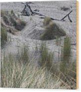 Gold Beach Oregon Beach Grass 15 Wood Print