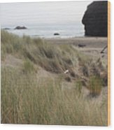 Gold Beach Oregon Beach Grass 24 Wood Print