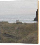 Gold Beach Oregon Beach Grass 4 Wood Print