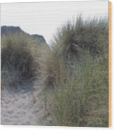 Gold Beach Oregon Beach Grass 5 Wood Print