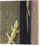 Gold Dusted Day Gecko Wood Print
