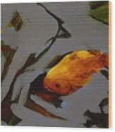 Gold In The Pond Wood Print