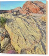 Gold Lava Flow In Valley Of Fire Wood Print