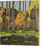 Gold On The River Meadow Park Lyons Co Wood Print