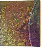 Gold Path Wood Print