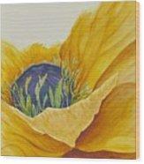 Gold Poppy Wood Print