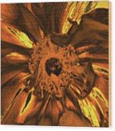 Golden Anemone Wood Print