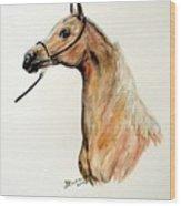 Golden Arabian Horse Wood Print