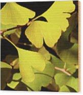 Golden Autumn In Tokyo Wood Print
