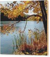Golden Autumn Lake Wood Print