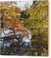 Golden Autumn Trees Wood Print