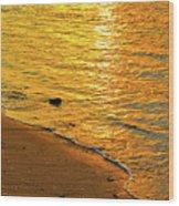 Golden Beach Sunset Wood Print