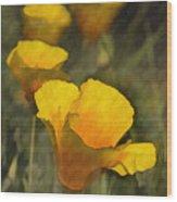 Golden Beauties Wood Print