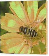 Golden Bee Wood Print
