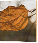 Golden Briar Leaf Wood Print