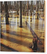 Golden Brown Frozen Pond Wood Print