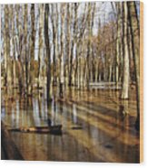 Golden Brown Pond Wood Print