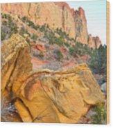 Golden Butte Wood Print