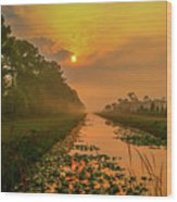 Golden Canal Morning Wood Print
