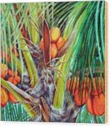 Golden Coconuts Wood Print