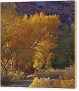 Golden Cottonwoods Wood Print