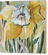 Golden Daffodil Wood Print