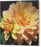 Golden Dahlia With Bud Wood Print