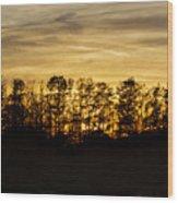 golden Dusk Wood Print