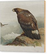Golden Eagle By Thorburn Wood Print