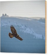 Golden Eagle Fly By Wood Print